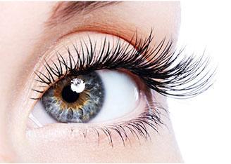 Eyelash Enhancement Serum Growth Condition Serum | NovaCutis